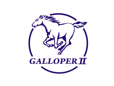 Enganches económicos para GALLOPER